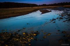 noyo-aberlady-1730 (Noyo Photography) Tags: river stream burn fujifilm xc eveninglight aberlady wildlifesanctuary xm1 1650mm pefferburn fujifilmxm1