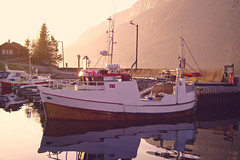 Marina (Matthias J.W.) Tags: sea sun norway out spring dale hiking fjord hav fjaler