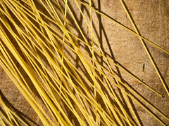 Play food - Spaghetti 2 (puss_in_boots) Tags: food abstract play geometry pasta spaghetti scattered phlibero