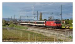 Re 460 (CC72080) Tags: train sbb locomotive coppet cff re460 interrégio