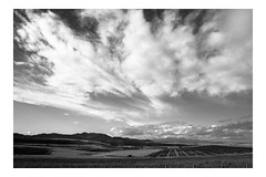 (Jos Monreal) Tags: specland landscape landscapelovers landscapephoto landscapephotographer landscapephotography landscaper blackandwhite blancoynegro chihuahua chepe trenchepe landscapeblackandwhite cloud clouds nubes