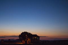 IMG_5149 (Cris_Pliego) Tags: sunset monumentvalley usadesert horse desert warmcolor bluesky