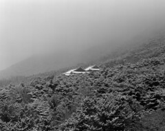 雪中 (Michael Sameth) Tags: chungcheong sangwol nonsan countryside nature mountains snow weather bw analog 4x5 film monochrome largeformat arca fmetric schneider aposymmarl winter korea asia buddhism cheontae fog