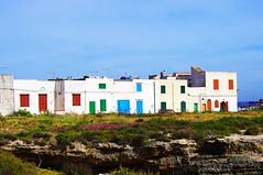 Line in Favignana (Tomas Pfeifer) Tags: favignana line houses sicily italy architecture