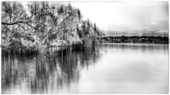 Green Lake (fovphotos.com) Tags: panasonic lumix dmclx7 greenlake bw
