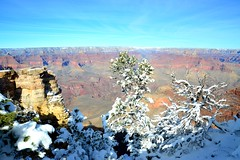Grand Canyon 9 (Krasivaya Liza) Tags: grandcanyon grand canyon national park canyons nature natural wonder az arizona holiday christmas 2016 snowy winter cliffs cliffside edgeofcliff