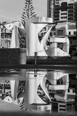 Albatross - a reflection (atogdude) Tags: morning blackandwhite bw sculpture reflection water canon puddle waterfront harbour wellington lightroom lowperspective