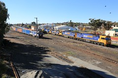 2013-05-24_1509-38-980 9311 9310 9305 and NR57 on 6WP2 passing GL110 at Junee (gunzel412) Tags: geotagged australia newsouthwales aus junee geo:lat=3487499333 geo:lon=14758245833