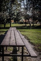 Picnic Table Perspective (KWPashuk) Tags: park ontario canada table nikon picnic perspective d200 oakville coronationpark kwpashuk kevinpashuk pashuk