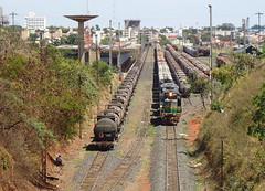 14755 DDM45 #868 + BB36-7 #7486 + DDM45 #829 com trem J652 na Linha 3; trem D544 na Linha 1 do ptio de Uberlndia MG (Johannes J. Smit) Tags: brasil vale trens fca