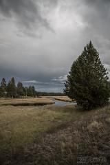 Yellowstone20130915-1-473 (photo.findingchina.info) Tags: america landscape nationalpark yellowstone teton