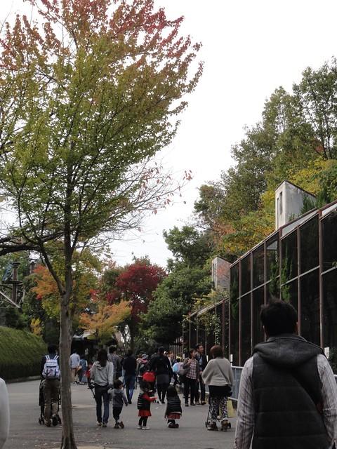 北園の入場口近くのところまでやってきました。|名古屋市東山動植物園