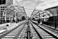 LYNX Light Rail Line - Charlotte, NC (JayCass84) Tags: camera beautiful train photography photo nc nikon flickr track charlotte awesome tracks northcarolina rail transportation carolina lightrail flick lynx d5100 instagram instagramapp nikond5100