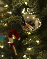 Day 2492 (evaxebra) Tags: christmas reflection tree cane candy luna ornament 365 candycane 365days