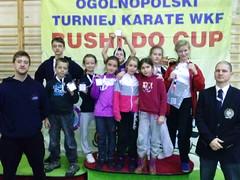 Turniej Bushi-do Cup w Bydgoszczy 30-11-2013