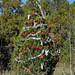 Trees_of_Loop_360_2013_277