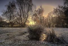 Sutton Park (beale.uk) Tags: misty landscape birmingham moody sony frosty icy alpha frostymorning westmidlands suttonpark a300 mistymorning sonyalphaa300 bealeuk bealeukphotography