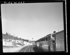 D+RGW293 (barrigerlibrary) Tags: railroad library denverriogrande drgw barriger