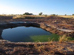 Willie Rockhole see exOz EOTopo (spelio) Tags: camp site bush desert general random nt australia selection outback remote northern territory 2011 willierockhole