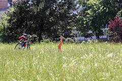 un giorno al parco (Zioluc) Tags: park city grass bike relax torino foot leg read lazy turin valentino periscope luciobeltrami