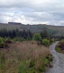 Wet (Bricheno) Tags: rain scotland path argyll escocia argyle szkocja schottland dunoon scozia cosse cowal  esccia   bricheno scoia
