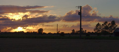 Sunset with a utility pole