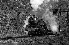 Emerging out of Mytholmes tunnel (Andrew Edkins) Tags: 460 30742photocharter bongo heritage vintage blackandwhite sun tunnel travel trip 61264 lner b1class mytholmstunnel keighleyandworthvalleyrailway preservedrailway geotagged porthole railwayphotography steamtrain yorkshire england spring trees march canon emerging 30742charters