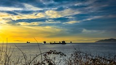 Vitamin 'Sea' (Images by Christie ♪♫ Happy Clicks for 2017 !) Tags: goldenhour sunset yellow gold water ocean vancouver westcoast bc canada britishcolumbia ships cargo sea bay sky clouds scenic peaceful serene waterscape seascape mountain light evening carrier port 2017 winter wintersky