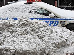captured (albyn.davis) Tags: weather snow winter police nypd nyc newyorkcity blizzard storm car white