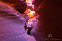 Crowded (Jared Ropelato) Tags: 2013 conserve environment jaredropelato outdoor pnc antelop art autumn beauty canyon conservation desert environmental fall hoodoo landscape nature pacific pacificnorthwest page ropelato ropelatophotography slot south southwest stools sw toad toadstools valleyoffire west wild wilderness zion