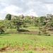 Landscape features in Mt Elgon district