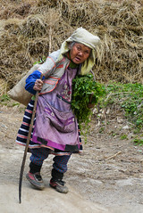 The old lady of the village ... (Rita Willaert) Tags: china tribal guizhou miao minority etnic anshun longhornmiao southwestchina minderheden villagelongga