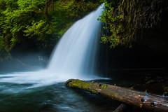 Upper Butte Creek Falls (Photos by Wesley Edward Clark) Tags: oregon waterfall buttecreek scottsmills upperbuttecreekfalls