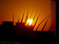 ~ XIX - The sun