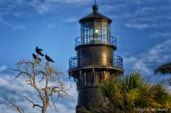 Once upon a time...three crows (hoan luong) Tags: family camping sunset vacation sun lighthouse white beach sc birds sunrise island bicycling high sand ancient picnic ride natural state dunes south tide low group hunting lakes scenic parks palm historic atlantic deer erosion biking dollar area cabbage beaches carolina destination campground racoon sporting shores inland beaufort villas cultural campsite sthelena palmetto cabins tilley recreational hoan luong velocia