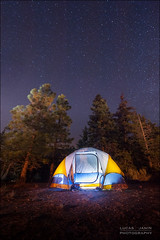 Sleeping or counting stars ? (Lucas Janin | www.lucas3d.com) Tags: california longexposure blue camping usa white plant color tree yellow night plante star nikon outdoor tent nikkor campground nuit arbre blanc couleur iso1600 lightroom tente f40 sanbernardino longueexposition 14mm 300sec nikond700 lucasjanin afsnikkor1424mmf28ged lightroom4