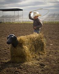Roping (Sam Stukel) Tags: rodeo lariat roper roping lasso littlecowboy kidsrodeo