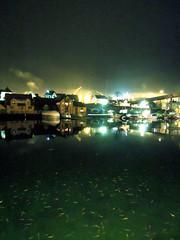 (nattbarn) Tags: fish haugesund february13 risy smedasundet