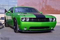 Dodge Challenger SRT8 (scott597) Tags: walter black green museum with wheels bbq dodge hemi chrysler envy challenger srt8 lxforums
