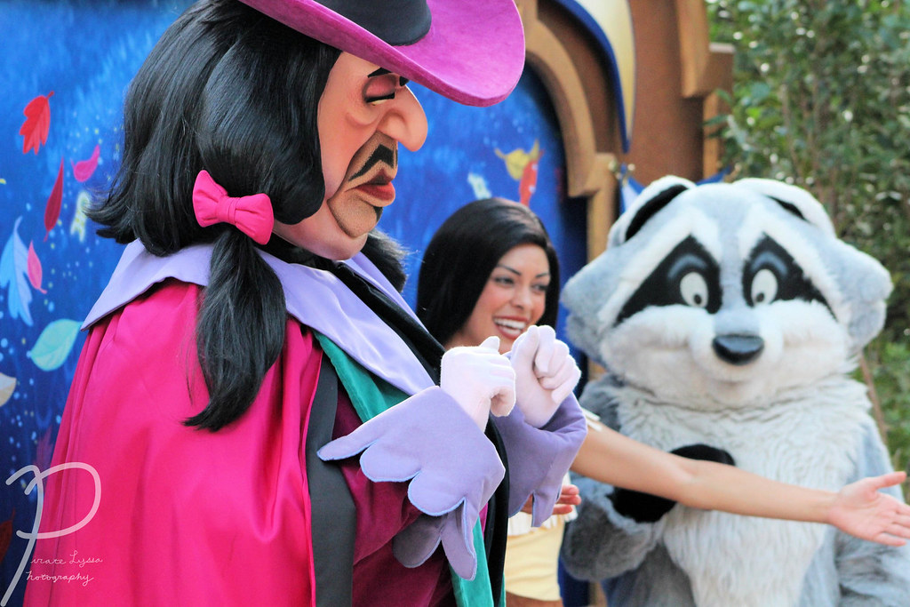 The World's Best Photos Of Disneyland And
