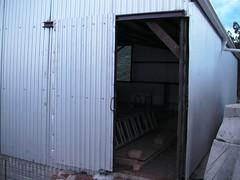 SANY5602