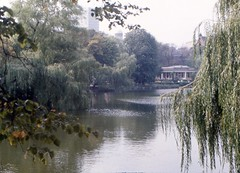 Copenhagen 1974 - Tivoli (Sir Hectimere) Tags: botanicalgardens themeparks pleasuregardens tivoligardens copenhagendenmark kobenhavndanmark