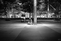 DSC00219 (Bryan.Chihan) Tags: flowers people streets macro closeup cityhall sony streetphotography cybershot rafflesplace mbs clouddome marinabay gardensbythebay marinabaysands gbtb rx1r