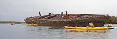 Ship Graveyard, Port Adelaide (hellew) Tags: kayaking gardenisland