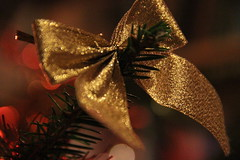 christmas_deco_II (MyFotographyGallery) Tags: christmas gold decoration christmastree
