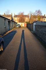 52-24 Winter Shadow (LynG67) Tags: winter january 52 2014