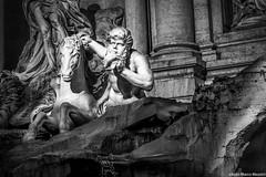 Cavallo Marino calmo guidato da tritone (Fontana di Trevi) - Roma (Alkimista101) Tags: italy rome roma italia tritone trevi cavallo marino fontanaditrevi calmo cavallomarino
