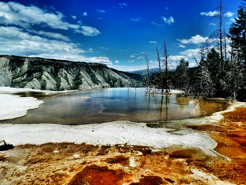 Mammoth Hot Springs/Yellowstone National Park