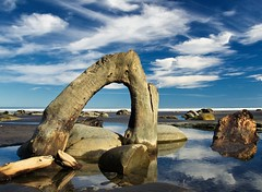 Driftwood arch (loveexploring) Tags: newzealand rock coast arch driftwood northisland tasmansea tidepool taranaki northtaranakibight
