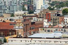 devo cas loose inkhead dink treez (Luna Park) Tags: nyc ny newyork brooklyn graffiti rooftops devo lunapark bombing cas loose treez dink inkhead